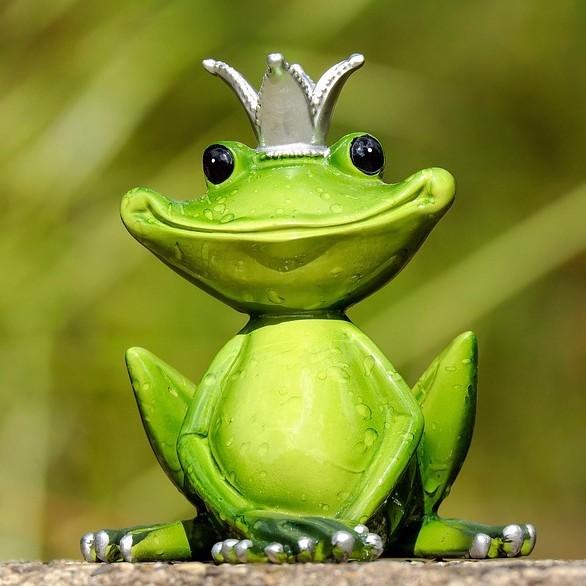 青蛙找店助手微信小程序