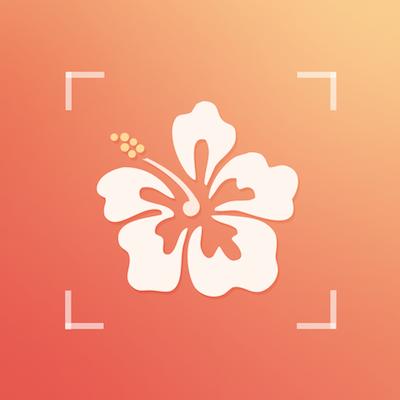 欲知花草-微信小程序