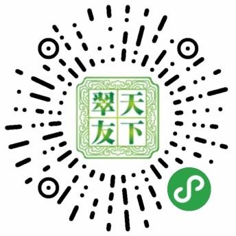 翠友天下-微信小程序二维码