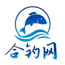 合肥钓鱼网-微信小程序