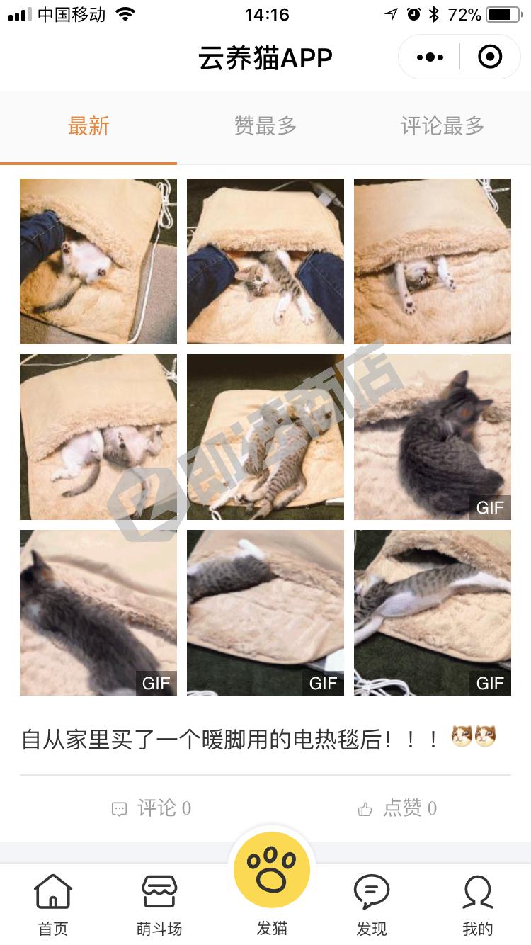 云养猫APP小程序详情页截图1
