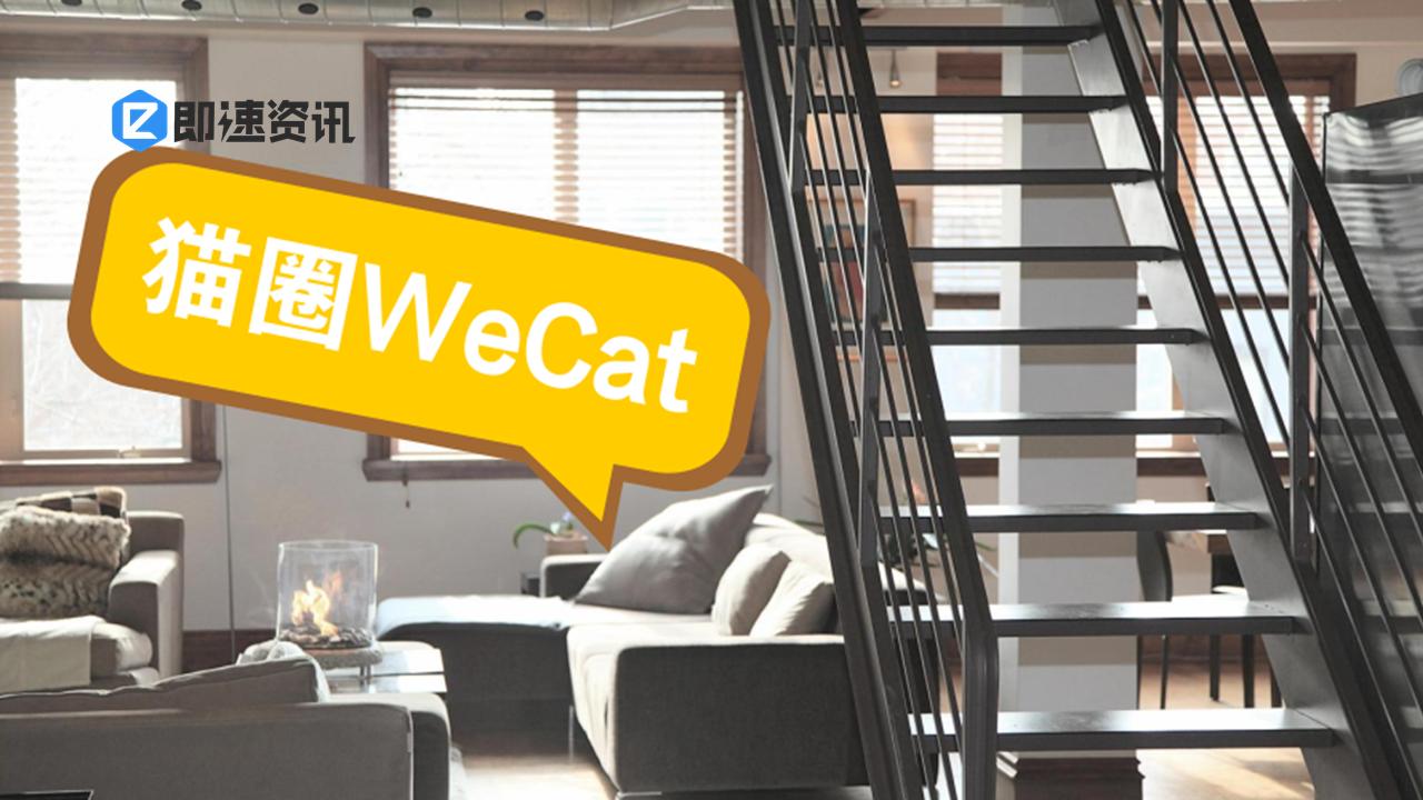 云养猫——猫圈WeCat小程序测评