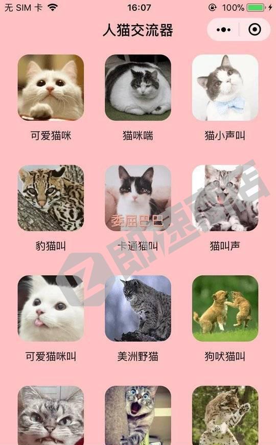 猫语翻译小程序列表页截图