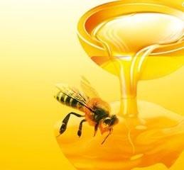 贵州省纯天然蜂蜜商城微信小程序