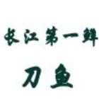野生长江刀鱼