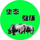 江西黑土猪