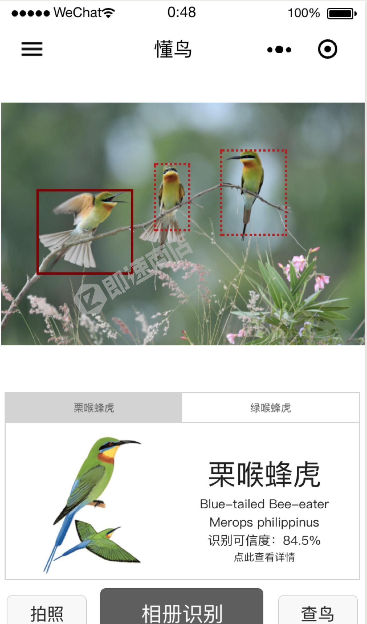 懂鸟小程序首页截图