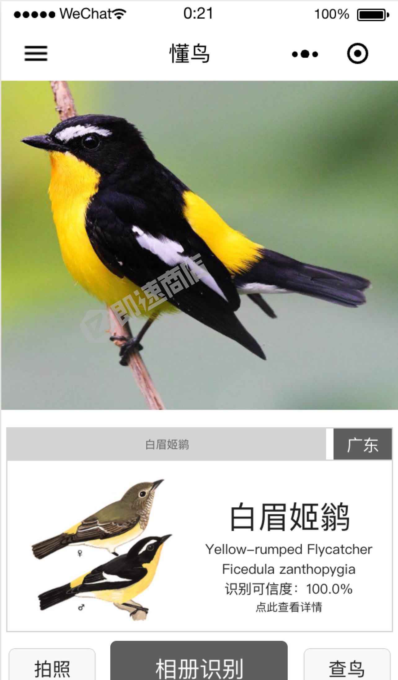 懂鸟小程序详情页截图