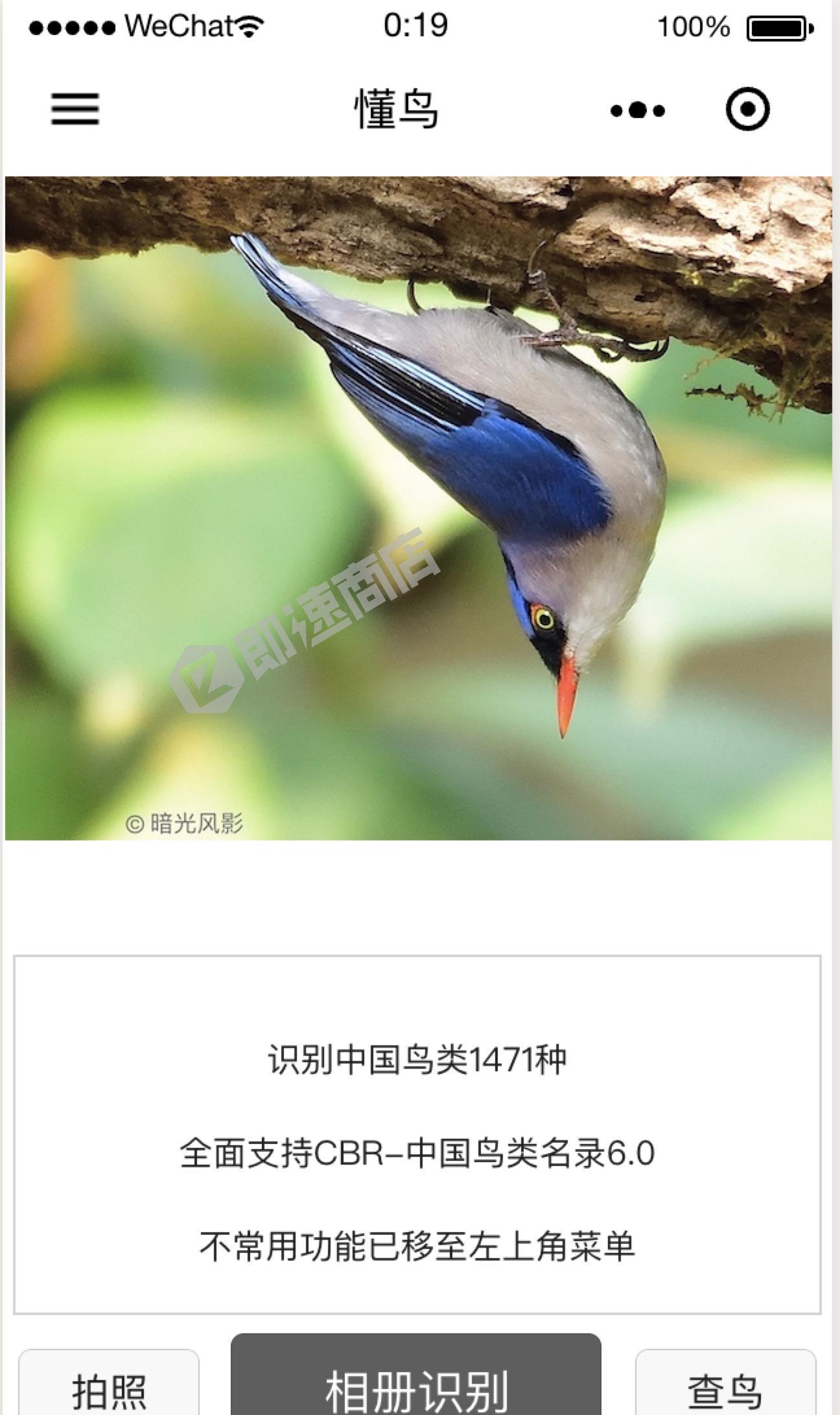 懂鸟小程序详情页截图1