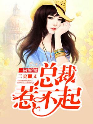 《一夜撩情:总裁惹不起》奇热小说