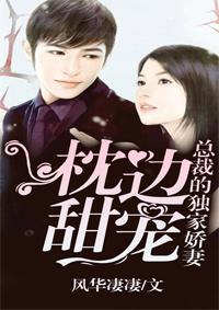 《枕边甜宠:总裁的独家娇妻》奇热小说