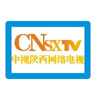 「中视新媒体培训顾问」实习僧