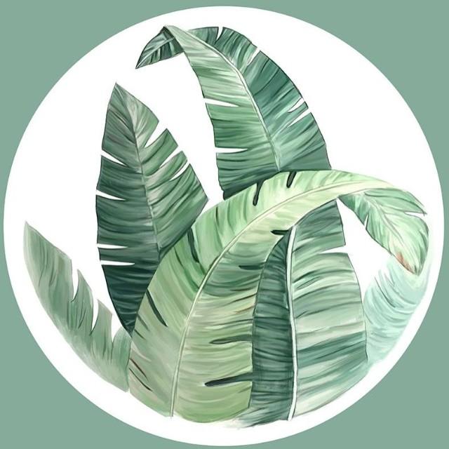 武汉绿植多肉雨林景-微信小程序