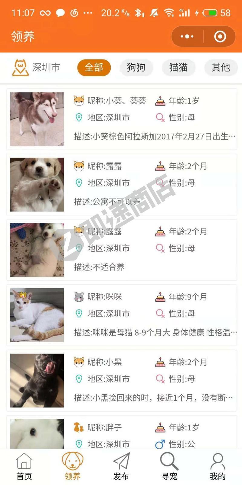宠物帮领养中心小程序列表页截图