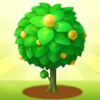 天天果园-微信小程序