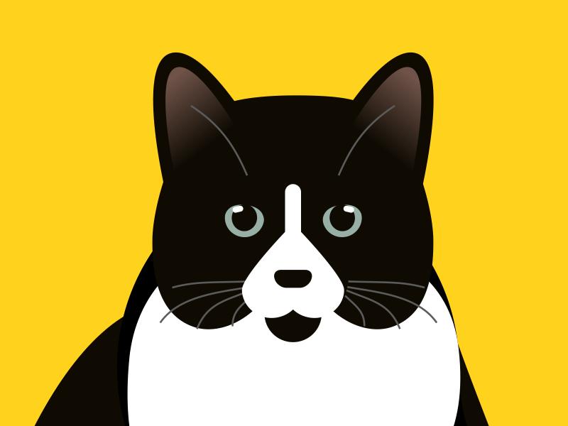 猫力看电影-微信小程序